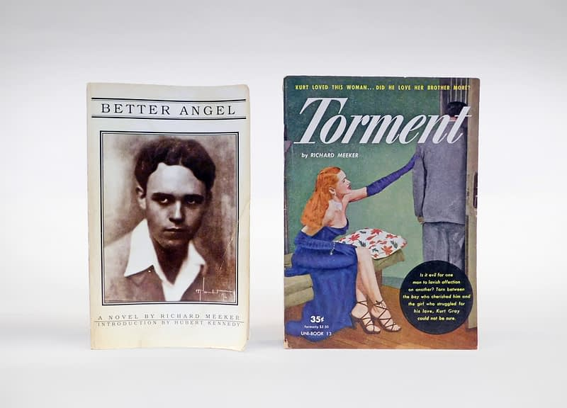 "Book Cover of ""Better Angel"" and ""Torment"" by Forman Brown"